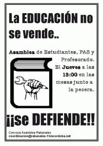 Cartel promoción asamblea